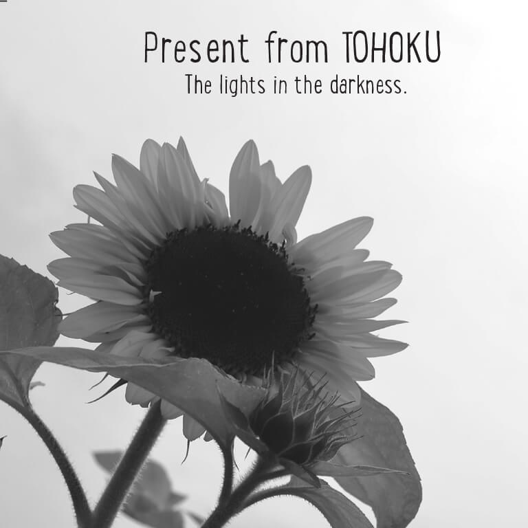 Misaki Ito The lights in the darkness